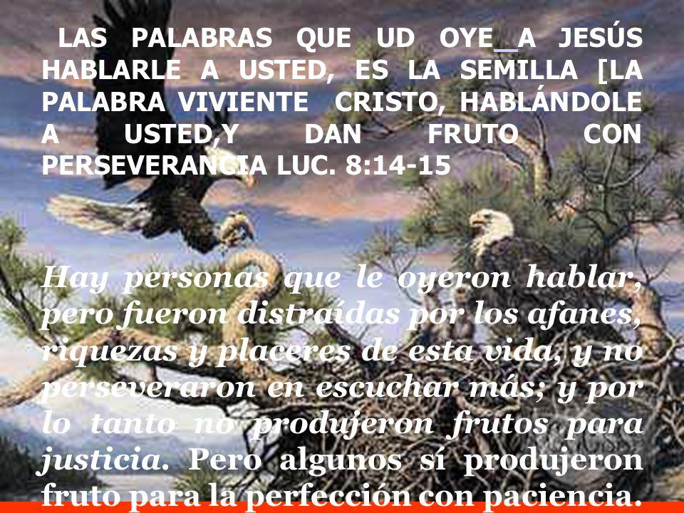 LAS PALABRAS QUE UD OYE A JESÚS HABLARLE A USTED, ES LA SEMILLA [LA PALABRA VIVIENTE CRISTO, HABLÁNDOLE A USTED,Y DAN FRUTO CON PERSEVERANCIA LUC. 8:14-15